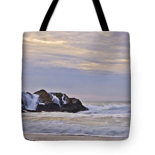 February Seascape Tote Bag by Priya Ghose