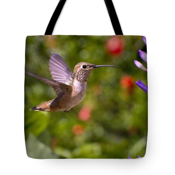 Female Allen's Hummingbird Tote Bag by Mike Herdering