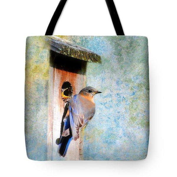 Female Eastern Bluebird At Nesting Box Tote Bag by Jai Johnson