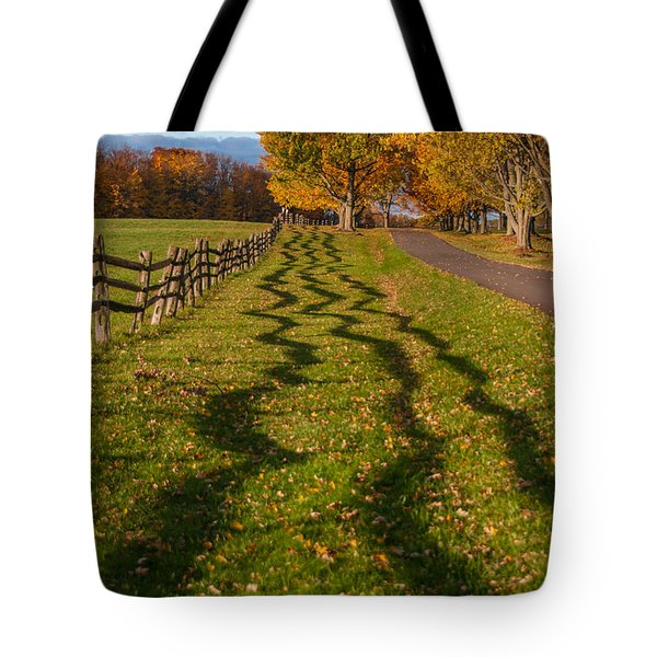 Fence Tote Bag by Guy Whiteley