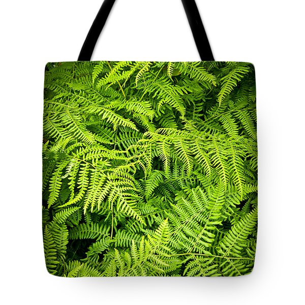 Fern Tote Bag by Elena Elisseeva