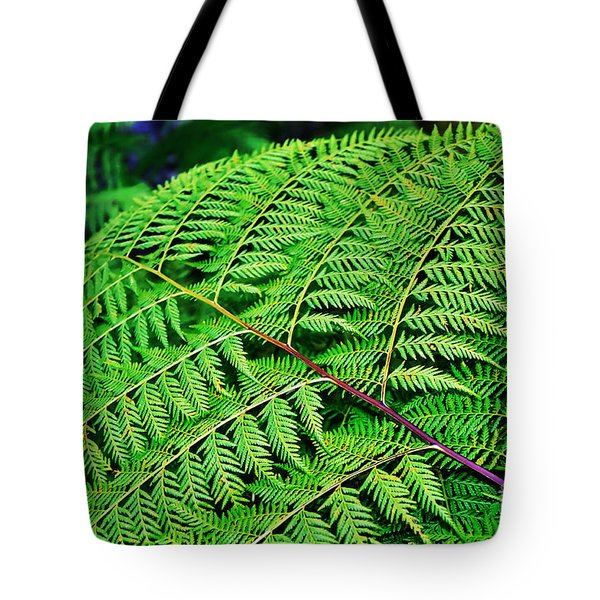 Fern Frond Tote Bag by Kaye Menner