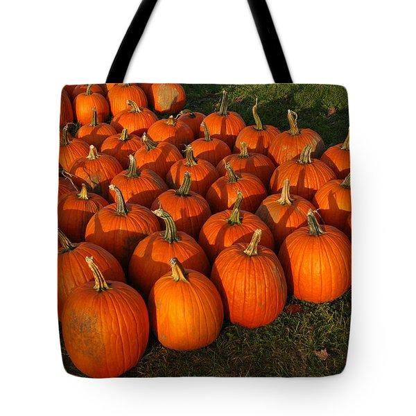 Field Of Pumpkins Tote Bag by LeeAnn McLaneGoetz McLaneGoetzStudioLLCcom
