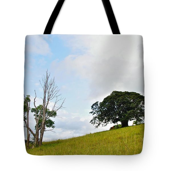 Fig Tree On A Hill Tote Bag by Kaye Menner