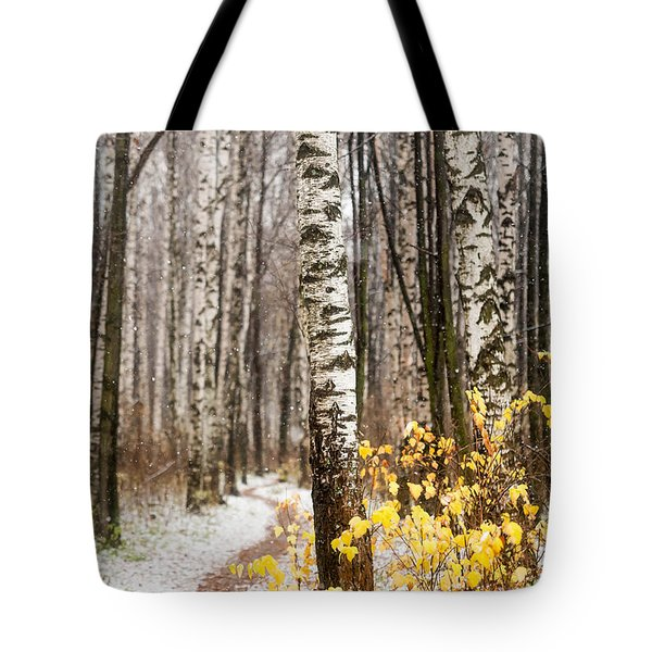 First Snow. Hidden Path Tote Bag by Jenny Rainbow