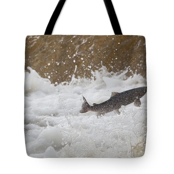 Fish Jumping Upstream In The Water Tote Bag by John Short
