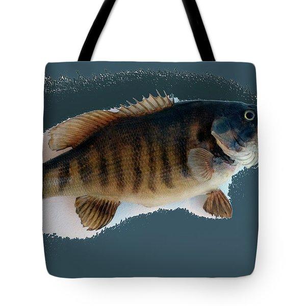 Fish Mount Set 10 B Tote Bag by Thomas Woolworth