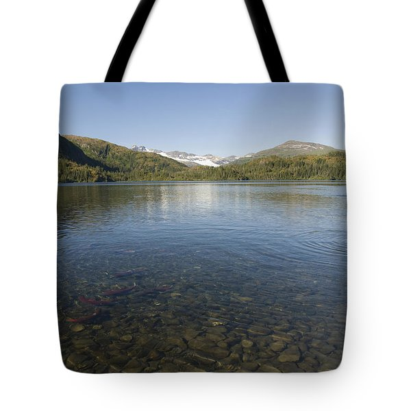 Fishing At Shrode Lake Tote Bag by Gloria & Richard Maschmeyer