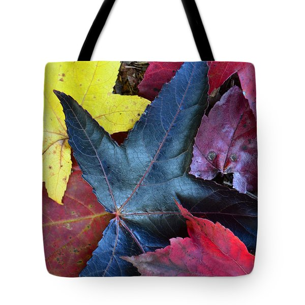 Five Fall Leaves Tote Bag by Sandi OReilly
