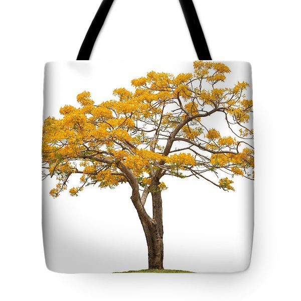 Flam Of The Forest Tote Bag by Atiketta Sangasaeng