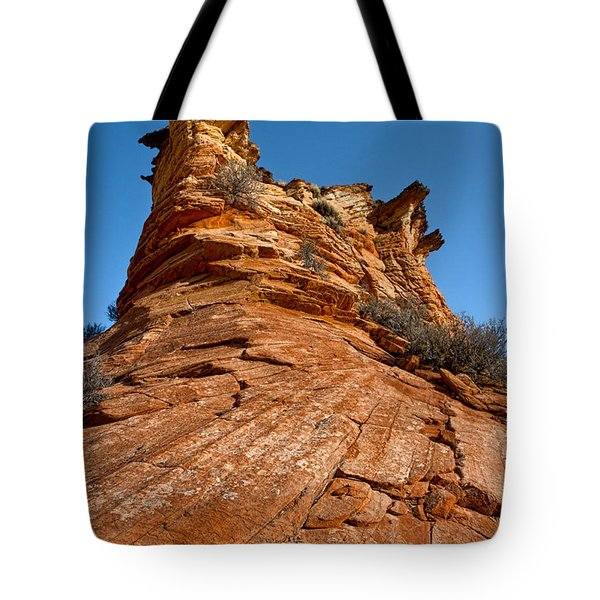 Flat Top Tote Bag by Christopher Holmes
