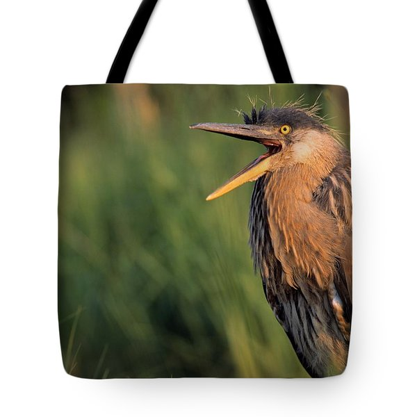 Fledgling Great Blue Heron Tote Bag by Natural Selection Bill Byrne