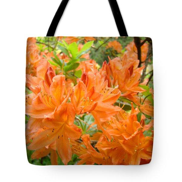 Floral art prints Orange Rhodies Flowers Tote Bag by Baslee Troutman