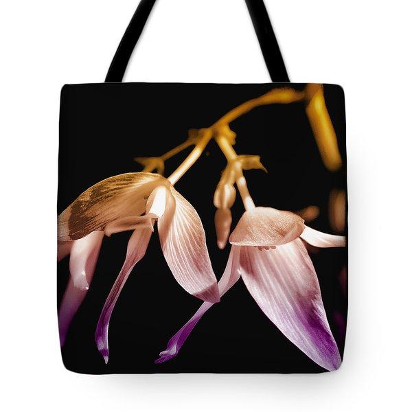 Floral Blend Tote Bag by David Patterson