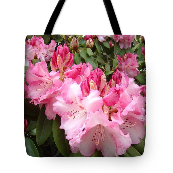 Floral Rhodies Photography Pink Rhododendrons prints Tote Bag by Baslee Troutman