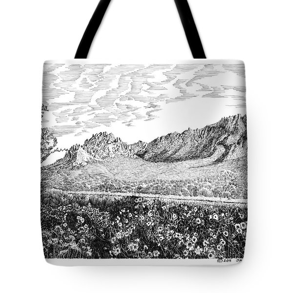 Florida Mountains And Poppies Tote Bag by Jack Pumphrey