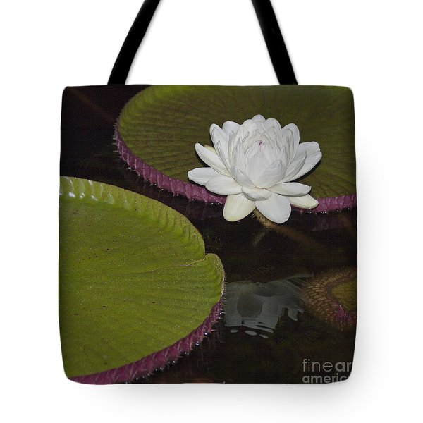 Flowering Victoria Lily Tote Bag by Heiko Koehrer-Wagner