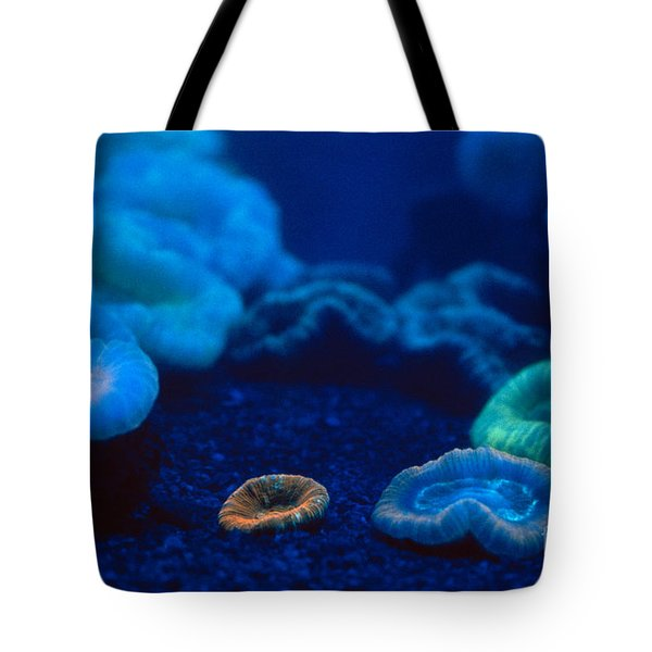 Fluorescent Corals Tote Bag by Kjell B Sandved and Photo Researchers