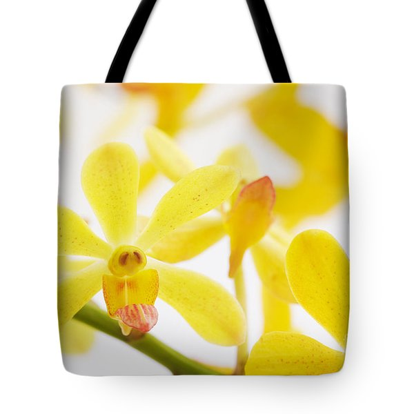 Focus On Tote Bag by Atiketta Sangasaeng