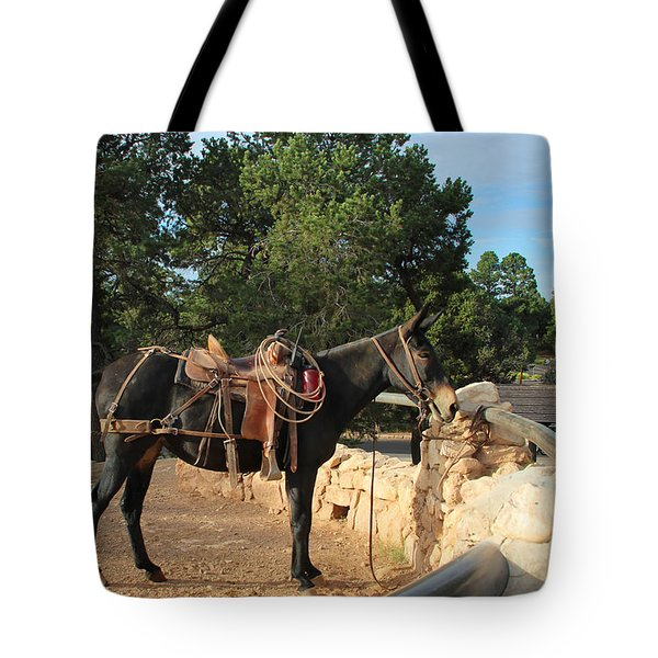 For The Ride Down Tote Bag by Heidi Smith