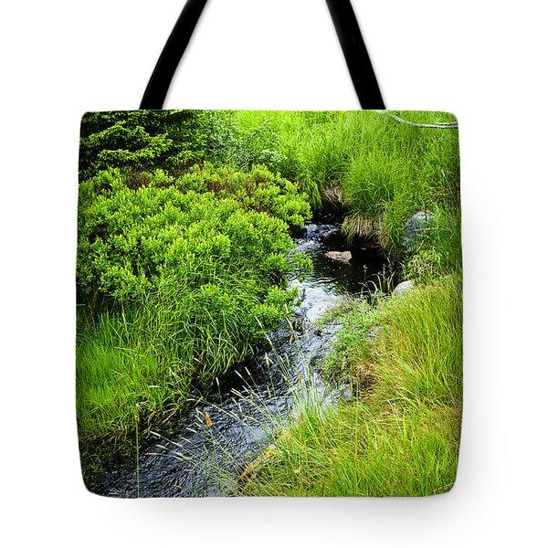 Forest creek in Newfoundland Tote Bag by Elena Elisseeva