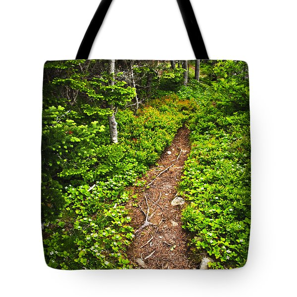 Forest Path In Newfoundland Tote Bag by Elena Elisseeva