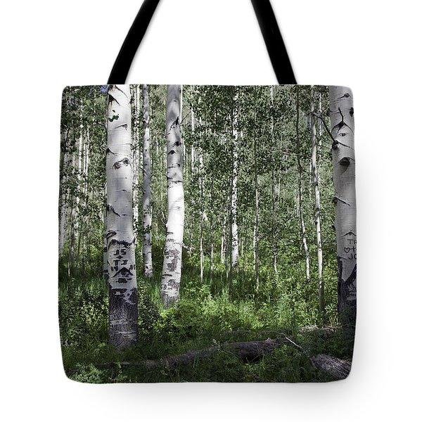 Forever Aspen Trees Tote Bag by Madeline Ellis