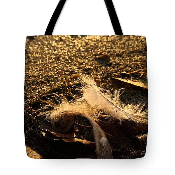 Found Feathers Tote Bag by Susan Herber