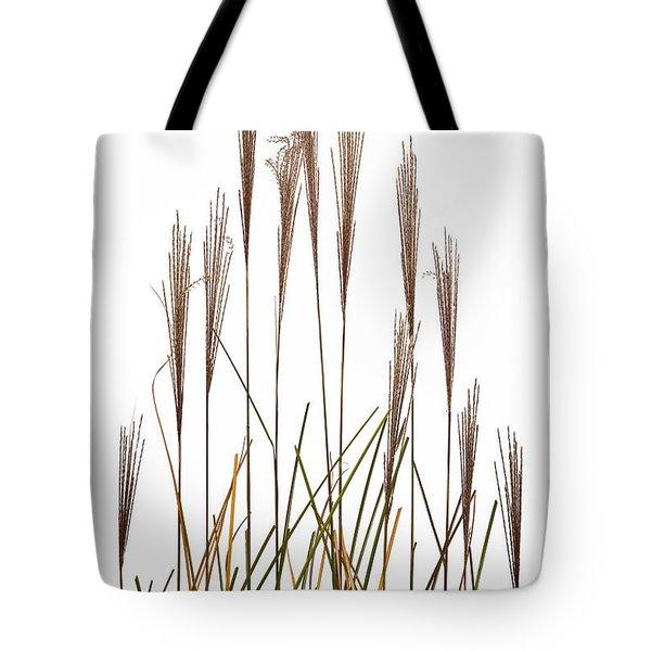Fountain Grass In White Tote Bag by Steve Gadomski