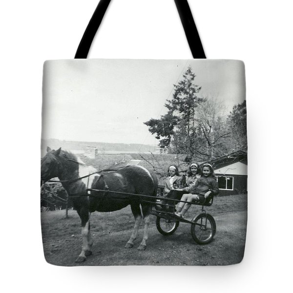 Freddy And The Three Amigas Tote Bag by Kym Backland