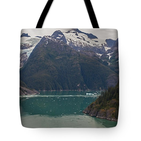 Frederick Sound Tote Bag by Mike Reid