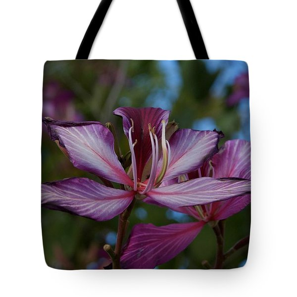 Freeze Tote Bag by Joseph Yarbrough