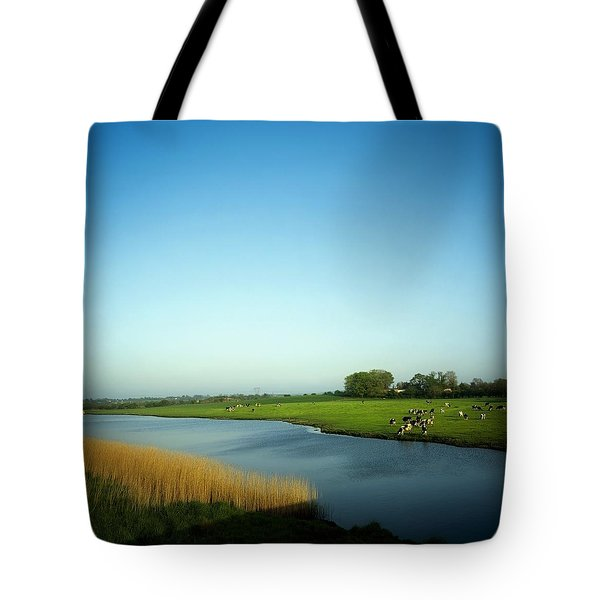 Fresian Cattle, Near Cobh, Co Cork Tote Bag by The Irish Image Collection