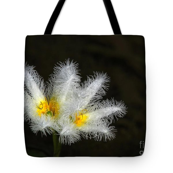 Frilly White Water Lily Tote Bag by Sabrina L Ryan