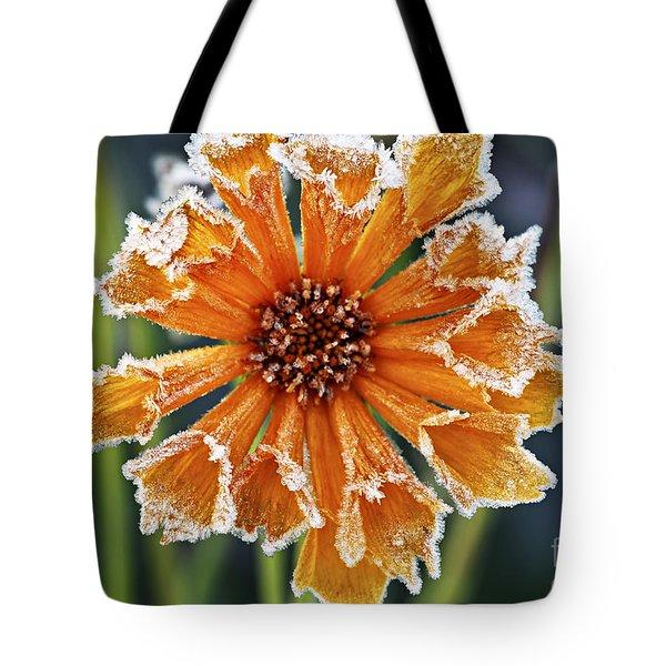 Frosty flower Tote Bag by Elena Elisseeva
