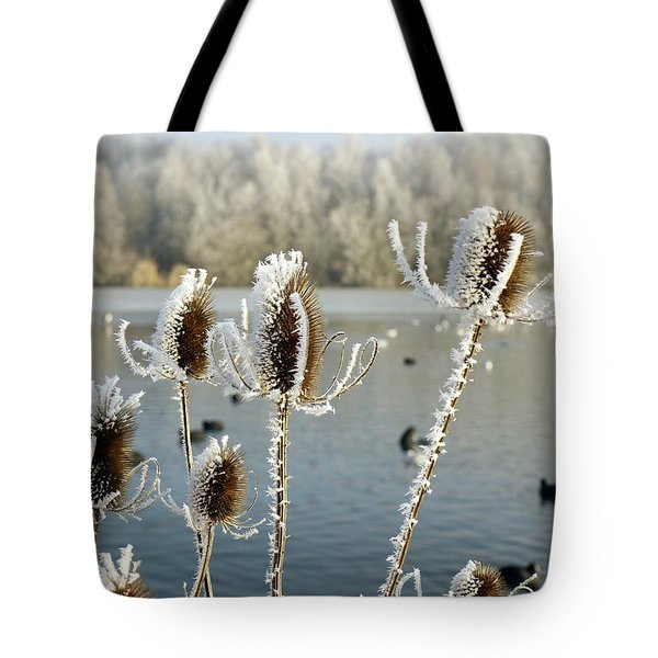 Frosty Teasel Tote Bag by John Chatterley