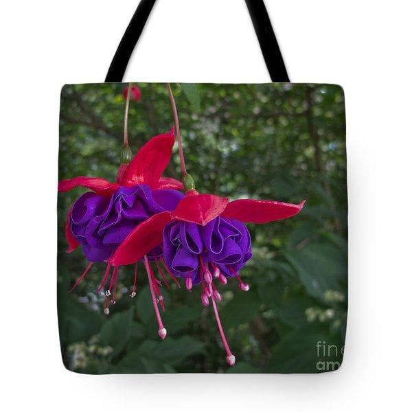 Fuchsia Flower Tote Bag by Arlene Carmel