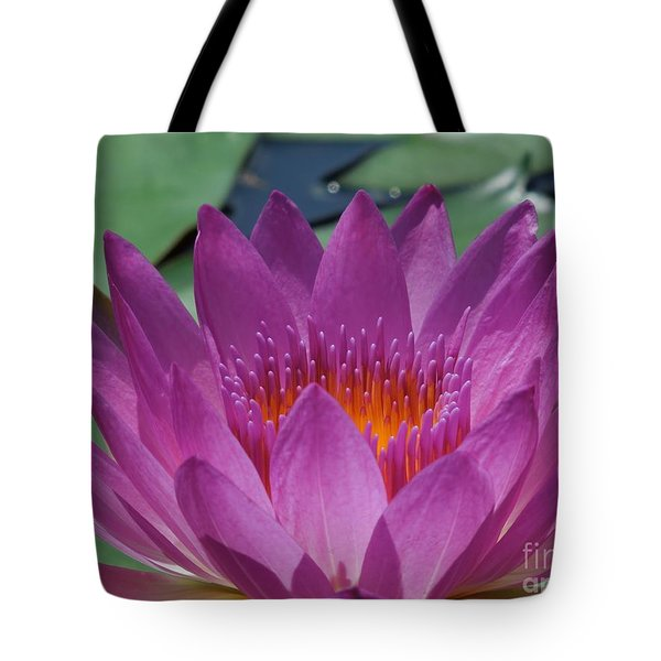 Fuchsia Water Lily Tote Bag by Chad and Stacey Hall