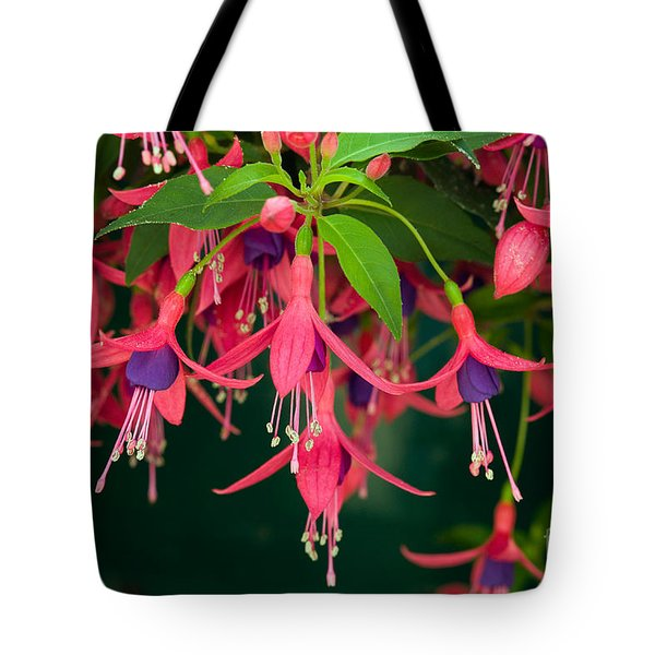 Fuchsia Windchime Flowers Tote Bag by Alan and Linda Detrick and Photo Researchers