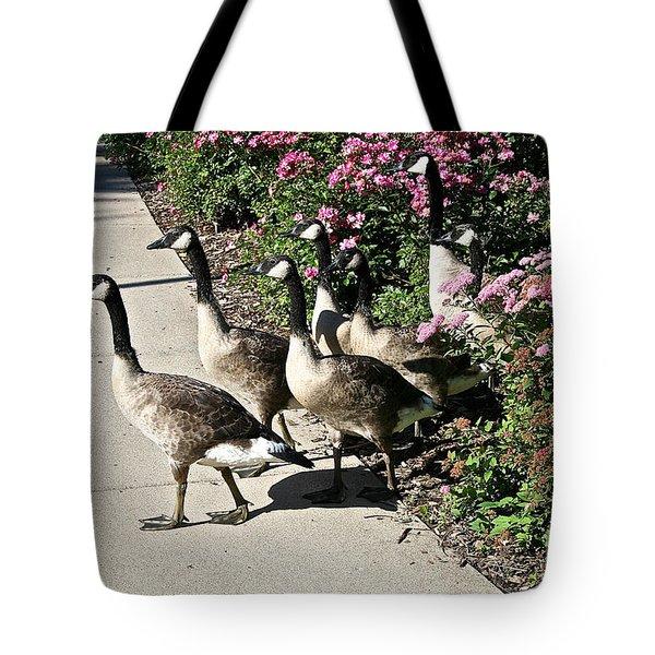Garden Geese Parade Tote Bag by Susan Herber