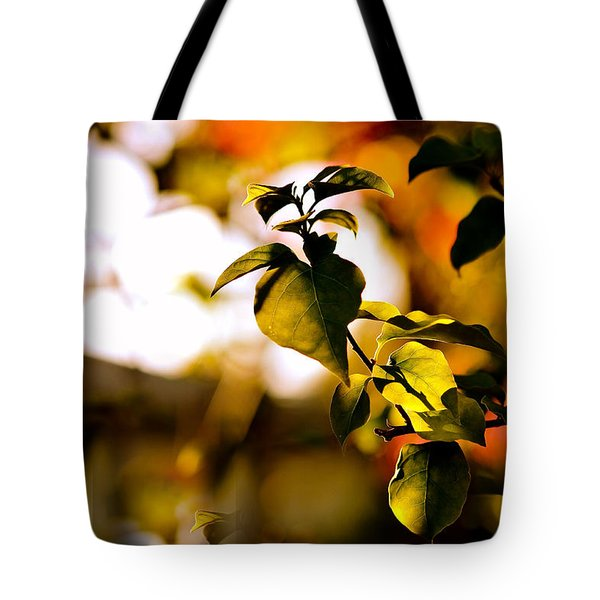 Garden Of Dreams. Colorful World  Tote Bag by Jenny Rainbow