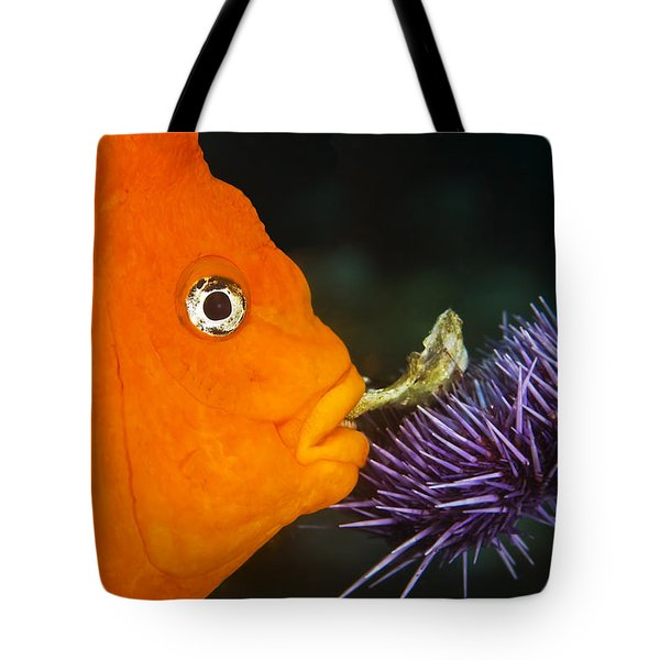 Garibaldi Damselfish Tote Bag by Mike Raabe