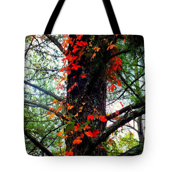 Garland Of Autumn Tote Bag by Karen Wiles
