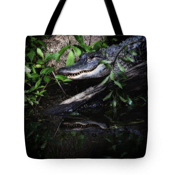 Gator Reflect Tote Bag by Karol Livote