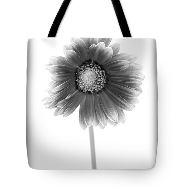 Gerbera In Black And White Tote Bag by Sebastian Musial