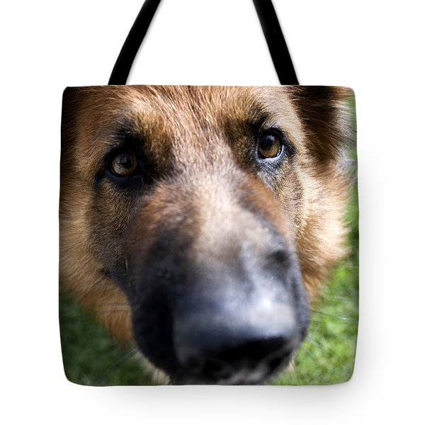 German Shepherd dog Tote Bag by Fabrizio Troiani