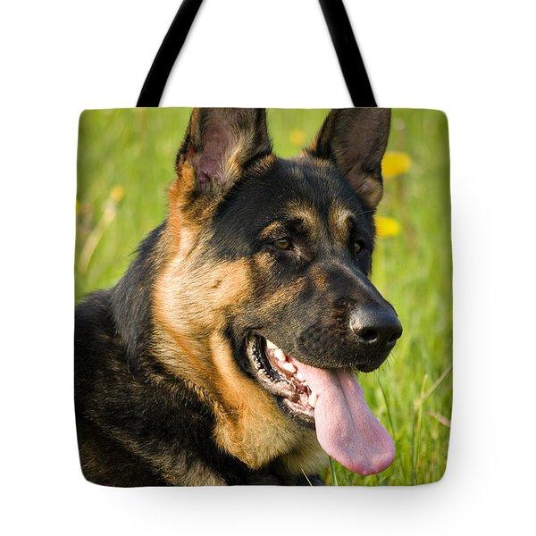 German Shepherd Tote Bag by Meirion Matthias