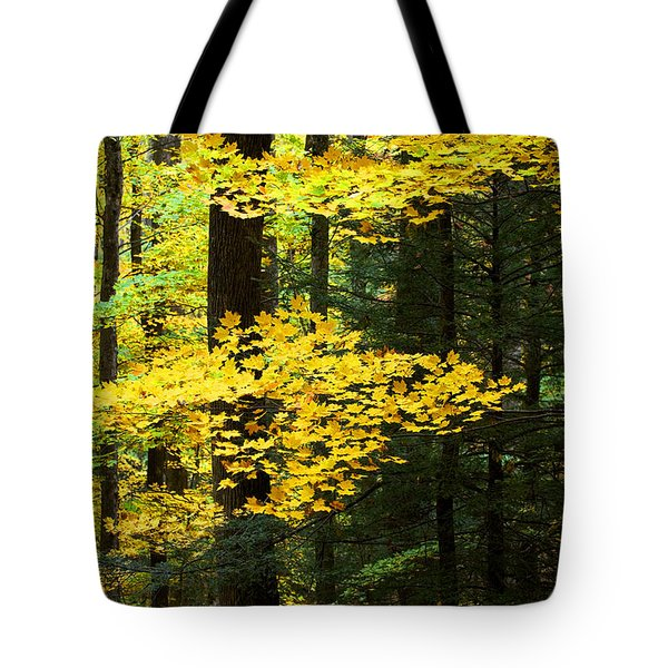 Getting Ready Tote Bag by Rich Franco