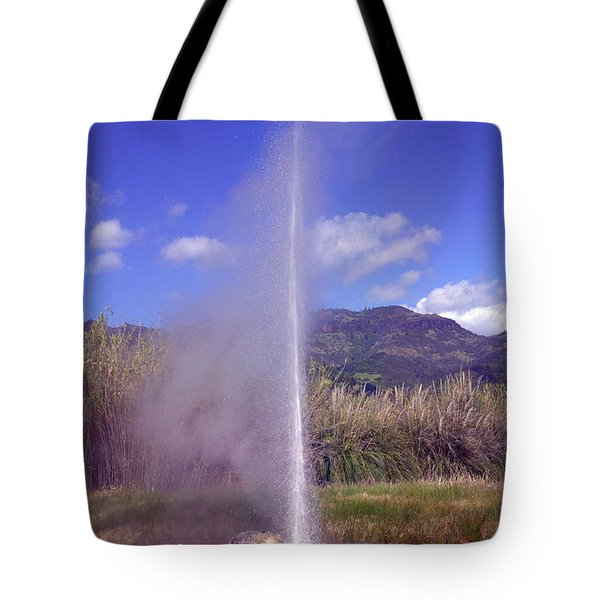 Geyser Calistoga Tote Bag by Garry Gay