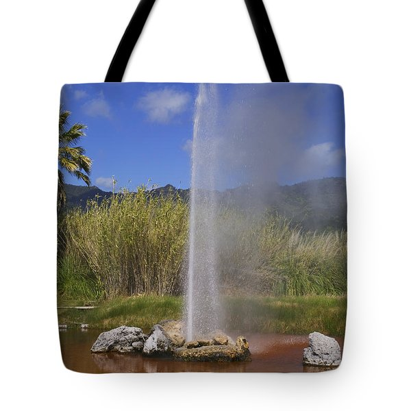Geyser Napa Valley Tote Bag by Garry Gay